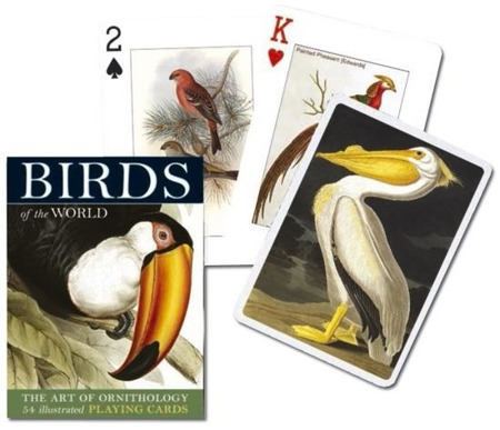 Karty 1482 Birds Of The World